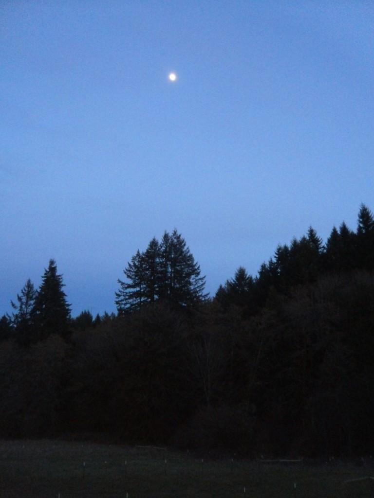 New Hue Handspun's moon rise