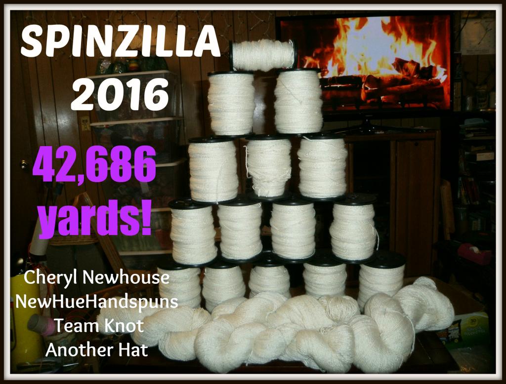 2nd Place Spinzilla 2016